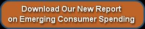 Consumer Spending Report 2010