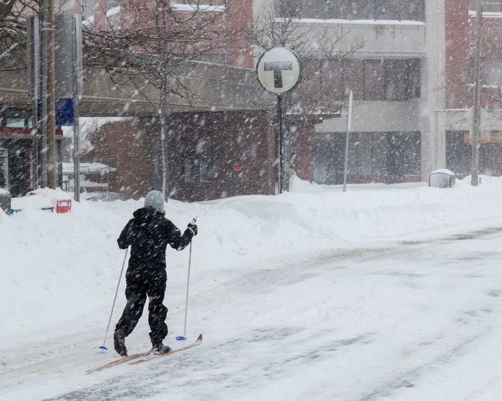 snow, boston, customer loyalty