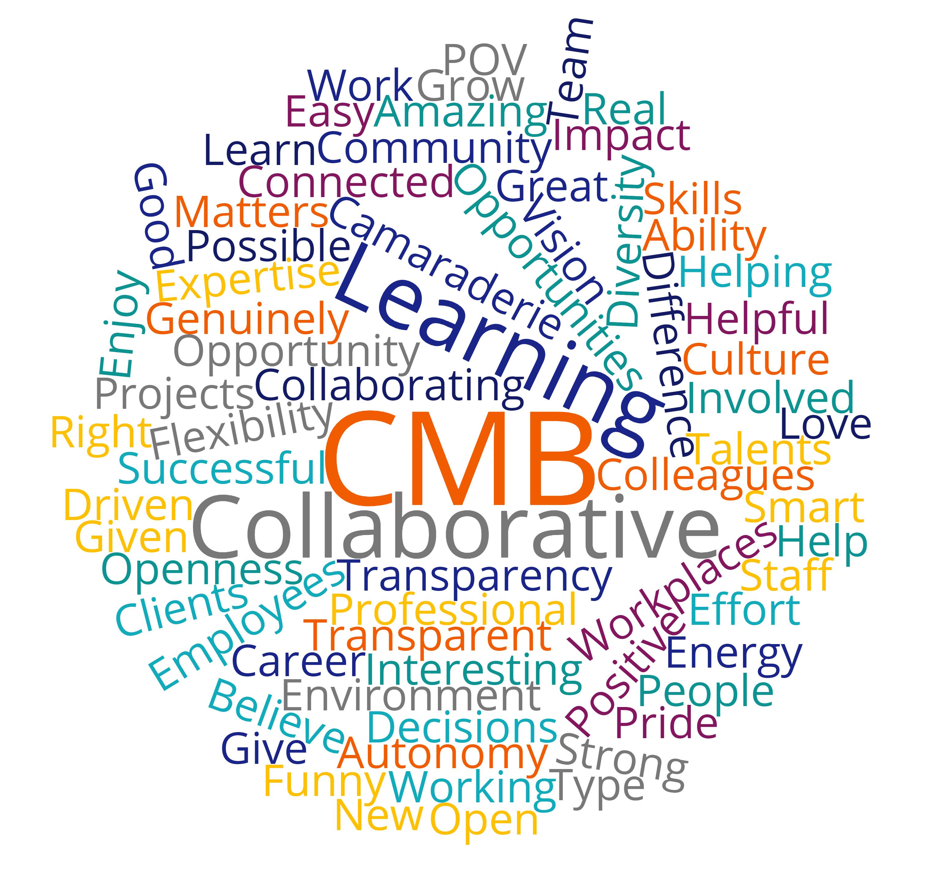 CMB word cloud copy.png