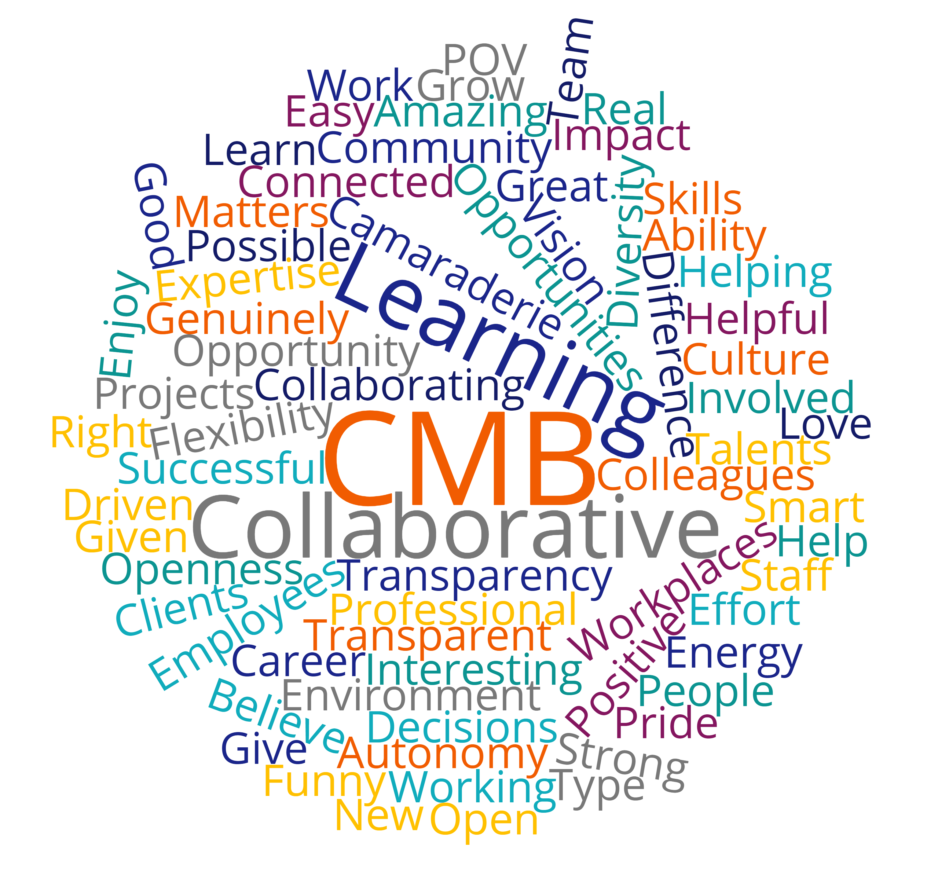 CMB word cloud copy.png